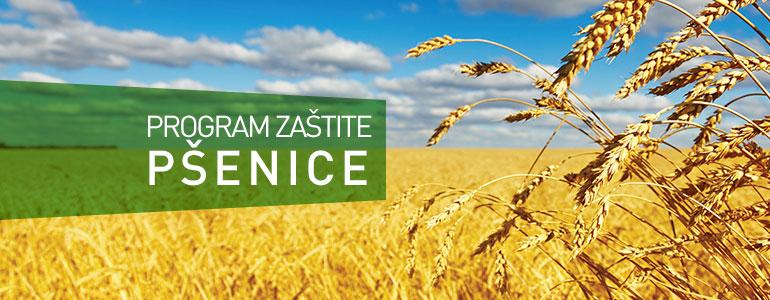 Program zaštite - Pšenica