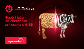 LG Zebra