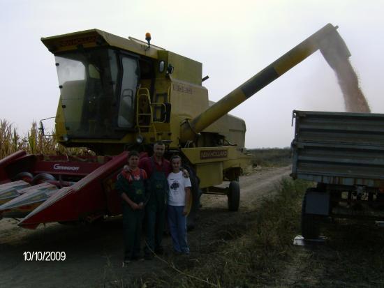 Kukuruz - Gajdobra 2009