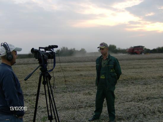 Soja - Gajdobra 2010