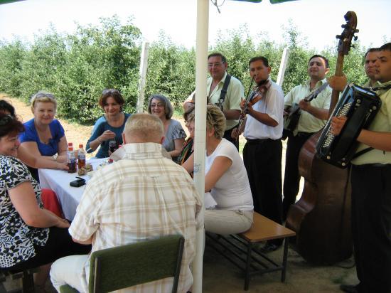 Dan polja 2011 - Bač