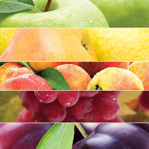 Prihrana voća